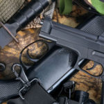 Professional Firearms Law Service California